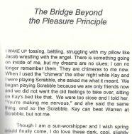 bridge beyond the pleaure principle