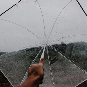 8 Quotes That Explain Why The Happiest People Are Fools That Dance In The Rain