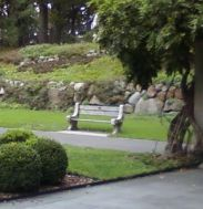 botanic garden bench