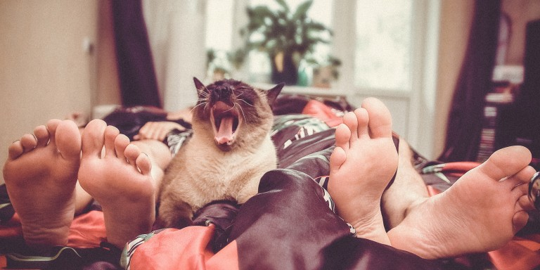 16 People On Their Favorite Thing That Their Partner Does In TheMorning