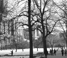 Boston Commons winter