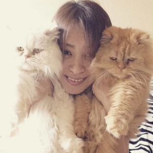 33 Reasons Being A 'Crazy Cat Lady' Is Secretly The Best Thing That Could Ever Happen To You