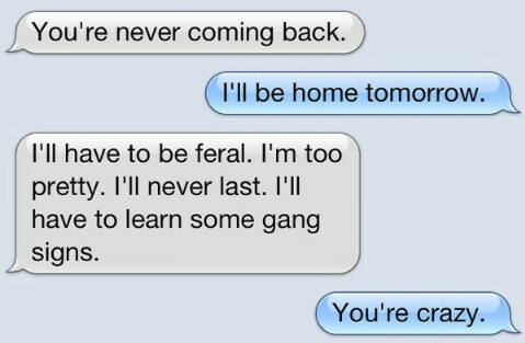 8 Hilarious Text Conversations That PURRFECTLY Illustrate What Your Life Would Be Like If Cats CouldText