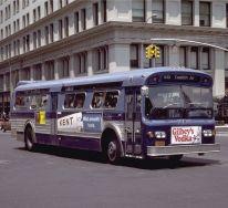 1979 bus