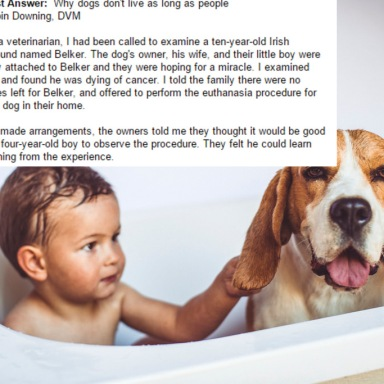 This Little Boy Shares His Tearjerking Theory About Why Dogs Don't Live As Long As Humans
