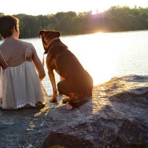 14 Indisputable Reasons Why Dogs Are Superior To Human Beings