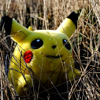The Dangers Of Pokemon Go As A Person Of Color