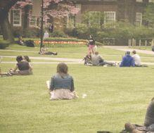 BC campus quad spring