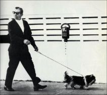 Meyer Lansky walking dog
