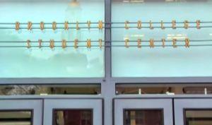 subo sign at entrance