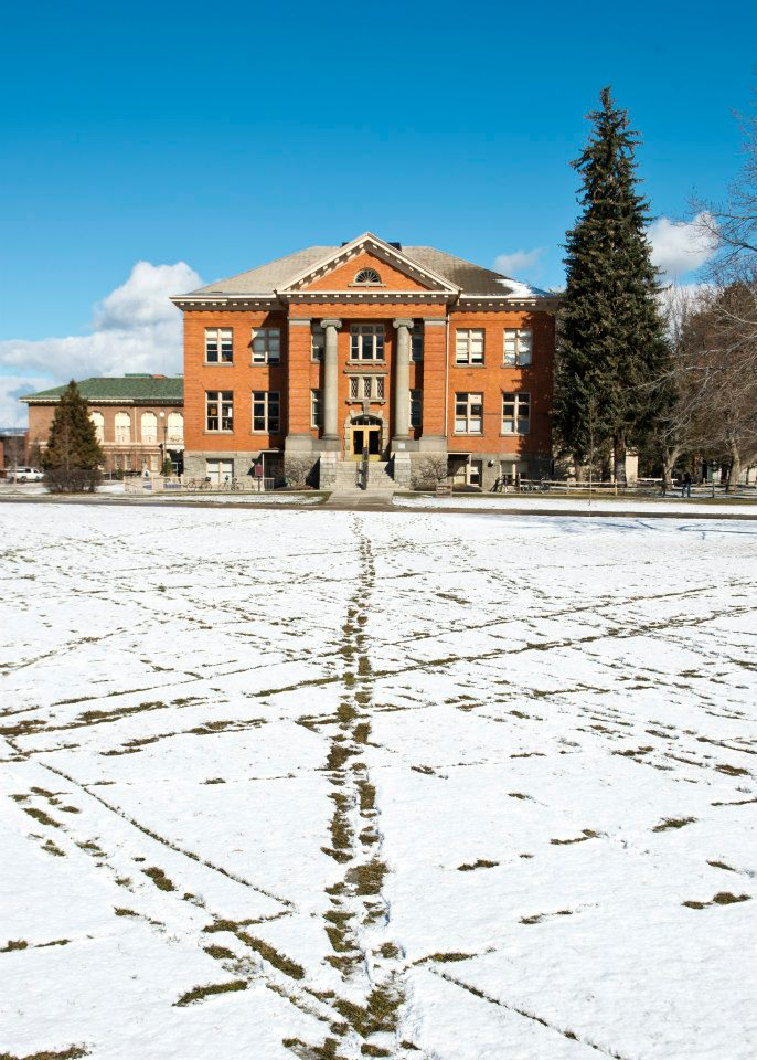 University of Montana