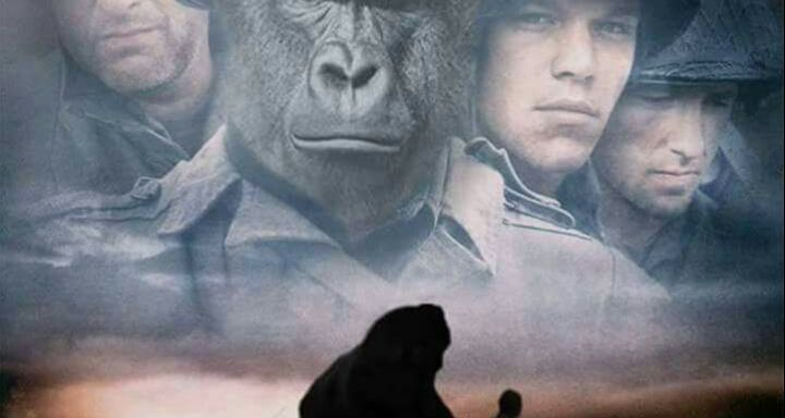 The 50 Greatest Harambe Memes Of AllTime