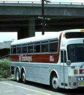 trailways bus 2