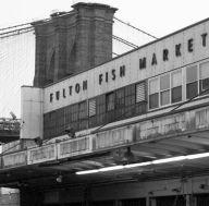 fulton-fish-market