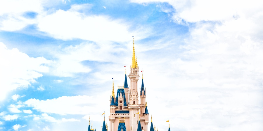 What Each Myers-Briggs Type Does At DisneyWorld