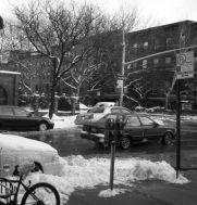 bensonhurst-snow