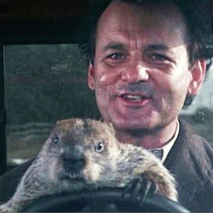 I Just Binge-Watched Every Bill Murray Movie And This Is Everything