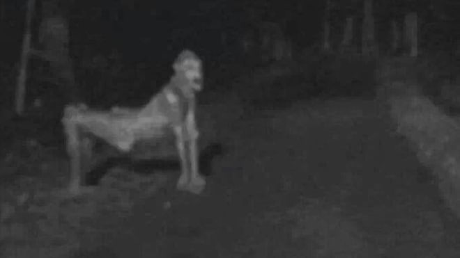 14 Facts About Skinwalkers That Will 100% Scare The Shit Out OfYou