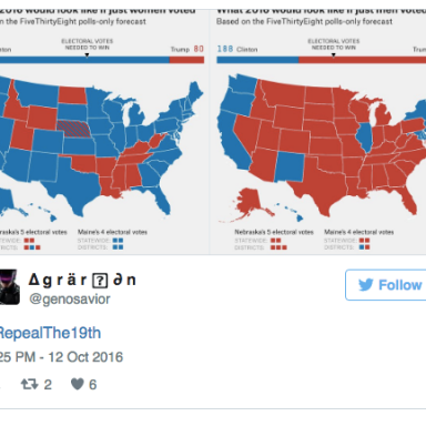 Here's All The People ACTUALLY Saying Women Shouldn't Be Allowed To Vote Anymore