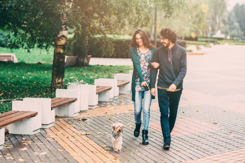 A man and a woman walking a dog in the park.