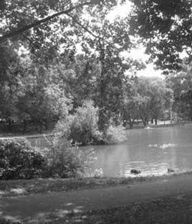 goose-pond
