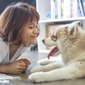 It's Time To Stop Looking For The Perfect Mate And Start Looking For The Perfect Dog