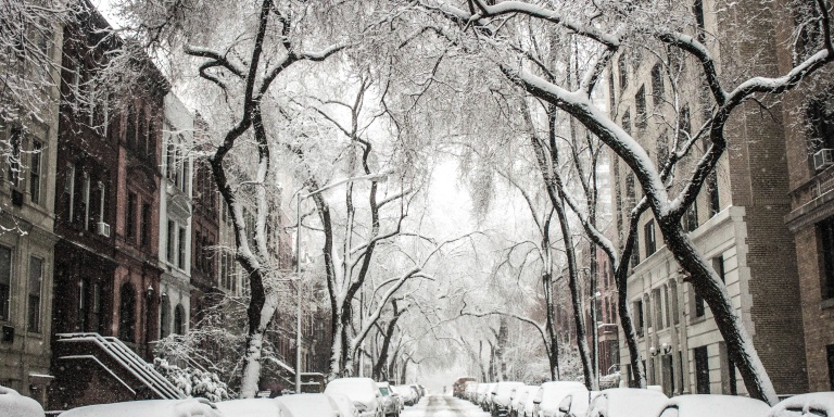 13 Things Every Person Can Look Forward To For Winter InNYC