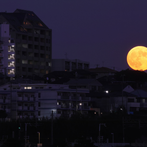 November 14th's Supermoon Will Be The Brightest For The Next 68 Years