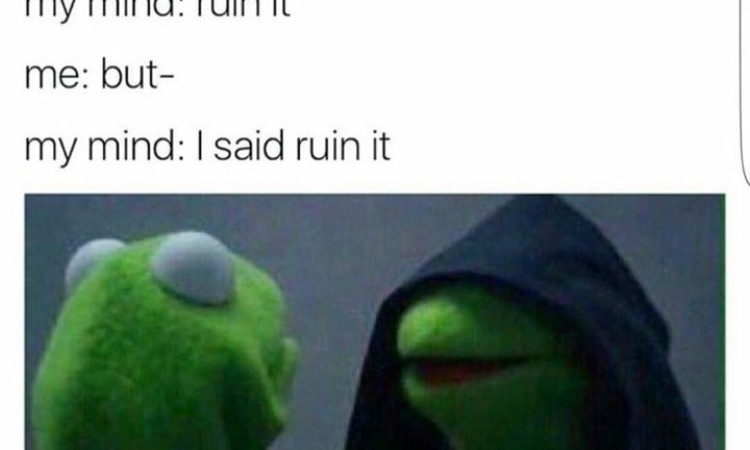 The 30 Most Hilarious 'Dark Kermit' Memes On The Entire Internet