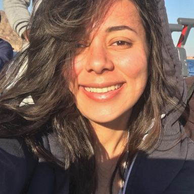 Merna Aboul-Ezz