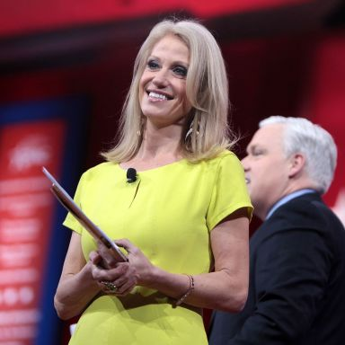 Here's Everything You Need To Know About Trump's Right-Hand Woman Kellyanne Conway