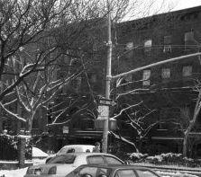 1981-snow