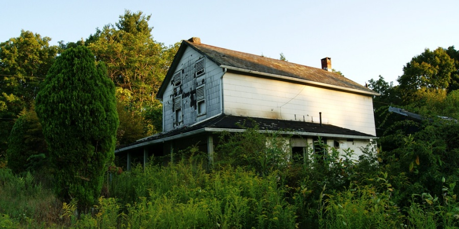 Everything About Our Family Farm Is Lovely…Except For What Lives In TheBasement