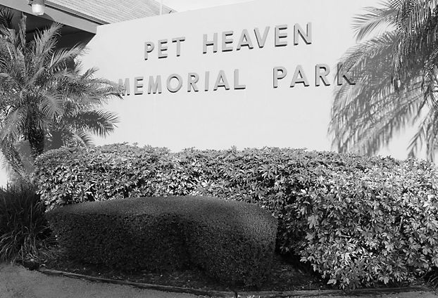 pet-heaven