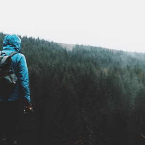 To Every Person Who Feels Lost And On The Wrong Path, Read This