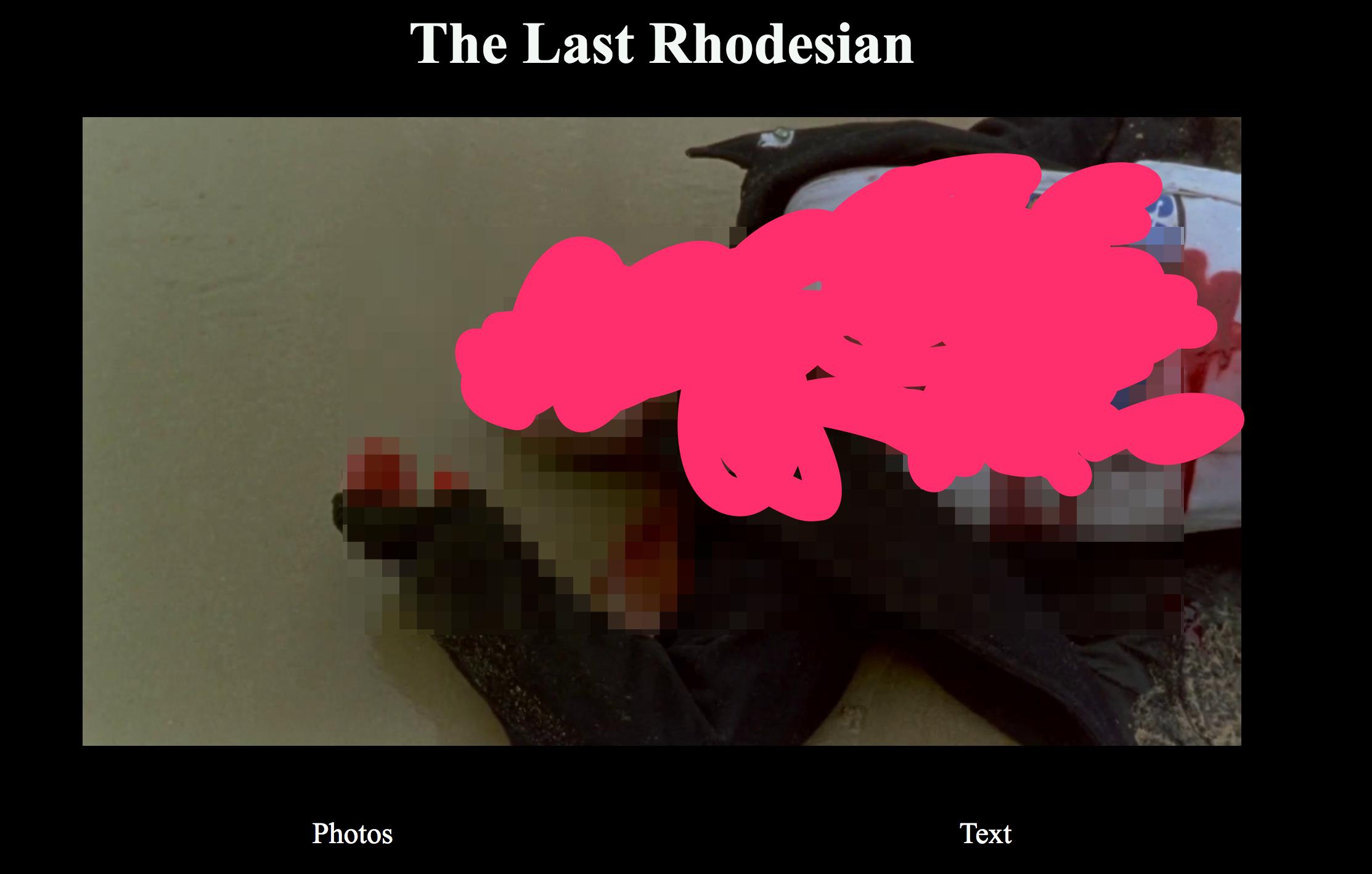 The Last Rhodesian