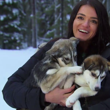 Screw Nick Viall — I Hope Raven Ends Up With These Cool Puppies