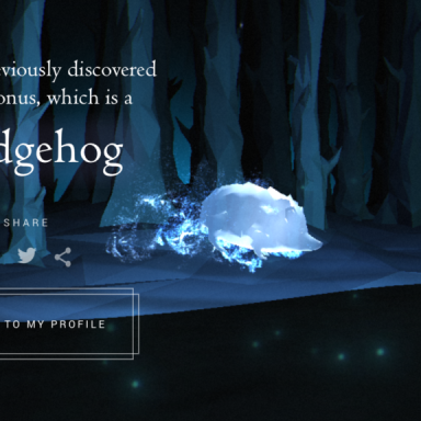 My Pottermore Patronus Is A Hedgehog And This Is How I Deal
