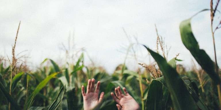 15 Inspiring Things You Need ToRemember