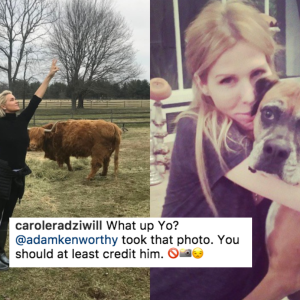Two 'Real Housewives' Have Beef Over A Photo Of A Tree Because Holy Shit, They Really Have Nothing Better To Do