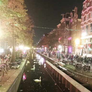 Why The Amsterdam Sex District Is Seedy For All The Wrong Reasons