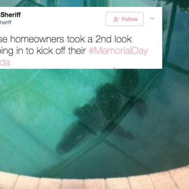 This Family Found An Alligator In Their Swimming Pool And It's Just Another Reason No One Should Live In Florida