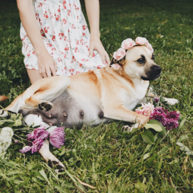 This Woman's Maternity Shoot For Her 'Best Friend' Is Super Extra And Everyone On Twitter Is Loving It