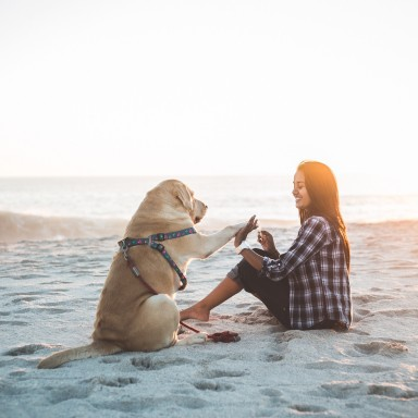 This Is What My Service Dog Taught Me About Myself
