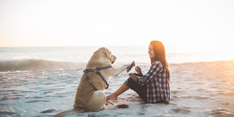 This Is What My Service Dog Taught Me AboutMyself