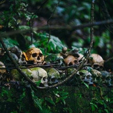 Skulls from movies