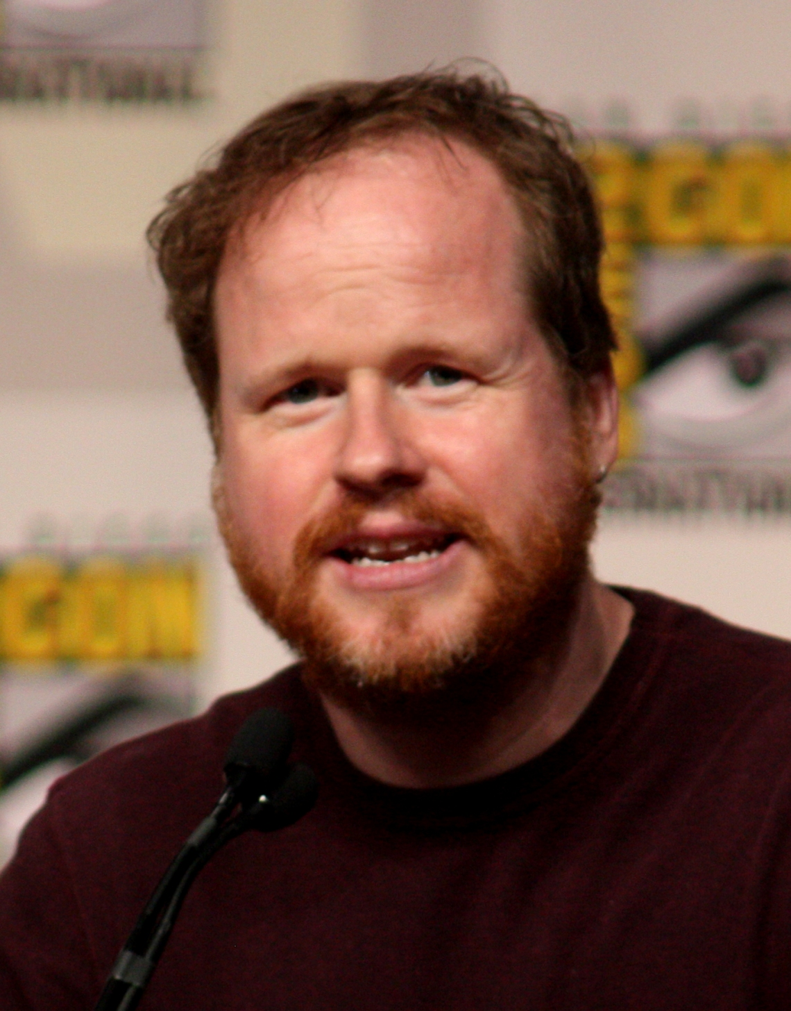 Joss Whedon at Comic Con