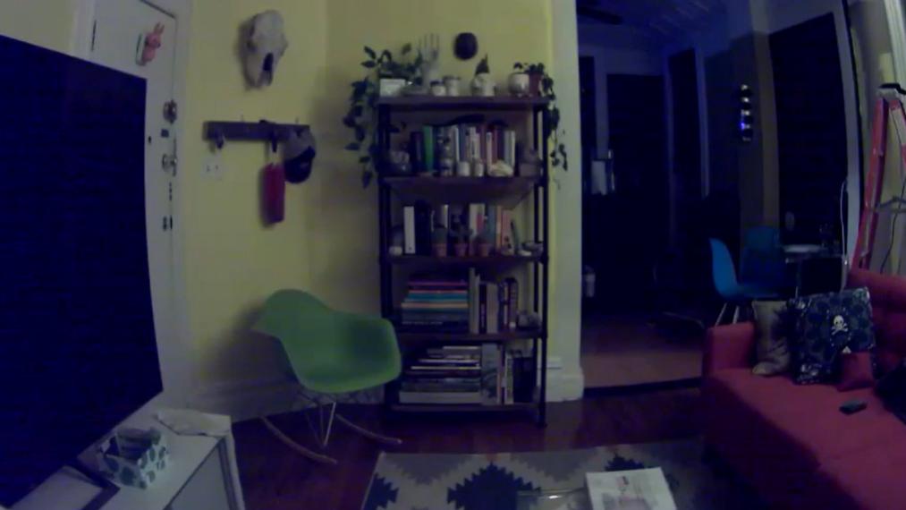 Video of Adam Ellis's apartment