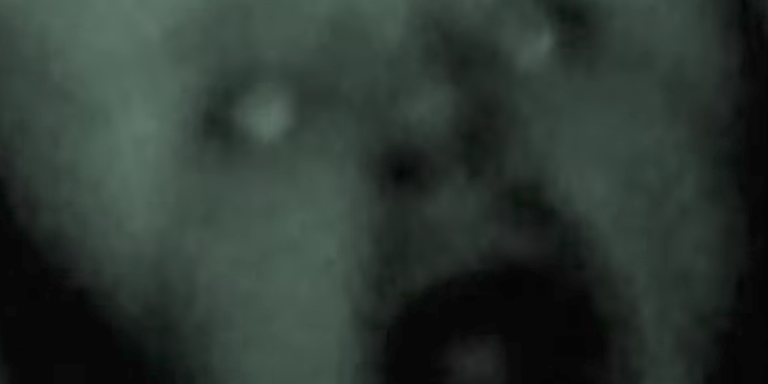 13 Grisly And Horrifying Videos You Shouldn't Watch If You Want To SleepTonight