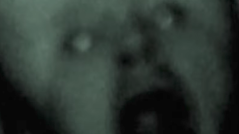 13 Grisly And Horrifying Videos You Shouldn't Watch If You Want To Sleep Tonight